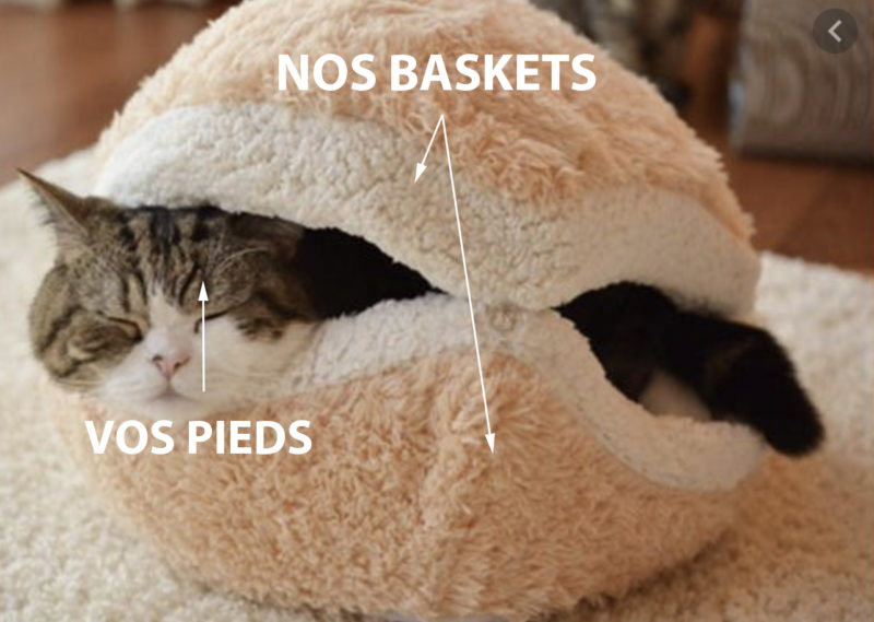 loom baskets blanches meme chat