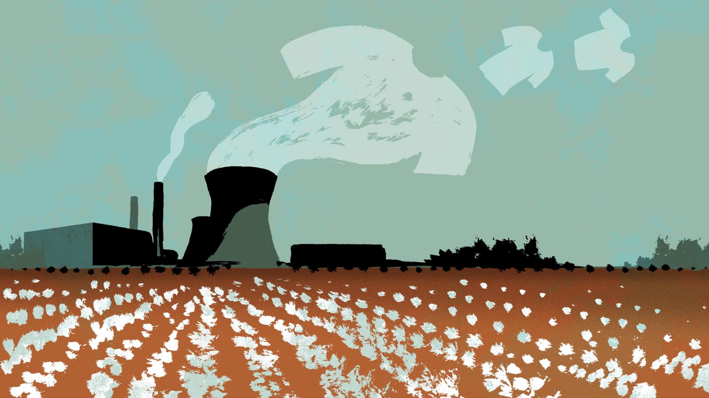 du charbon dans le coton